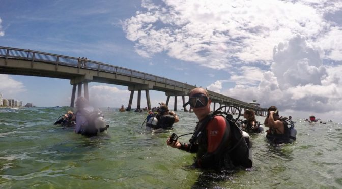 Diving for marine life, a cleanup effort and a world record