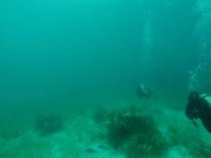 Jules Verne Dive Site