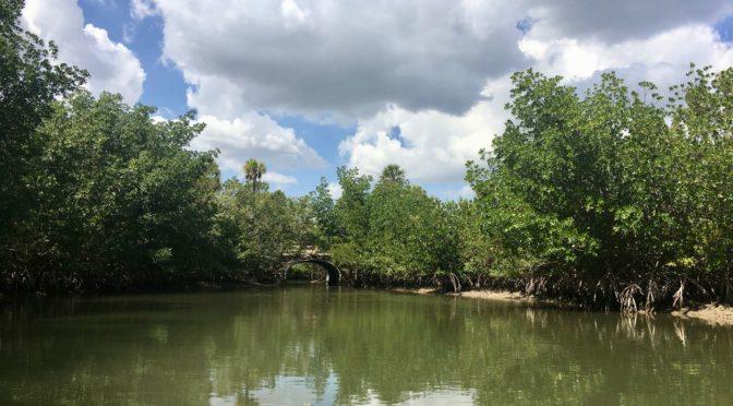 Exploring Oleta River State Park, Miami