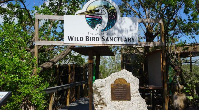 Visiting the Laura Quinn Wild Bird Sanctuary