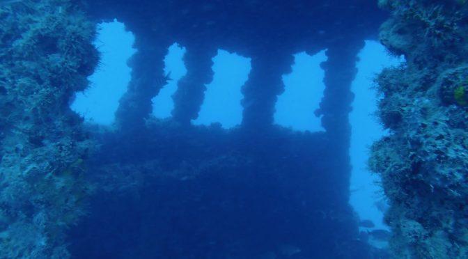 Diving the Ken Vitale Memorial (Tracy Wreck)