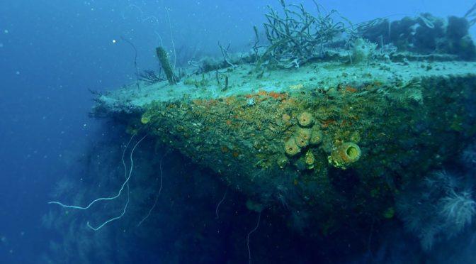 Diving the wrecks of Grenada's South Coast