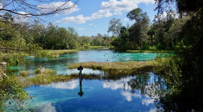 Visiting Florida's Natural Springs in Crystal River, Homosassa, and Rainbow Springs